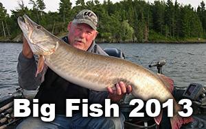 big-fish-thumbnails-2013